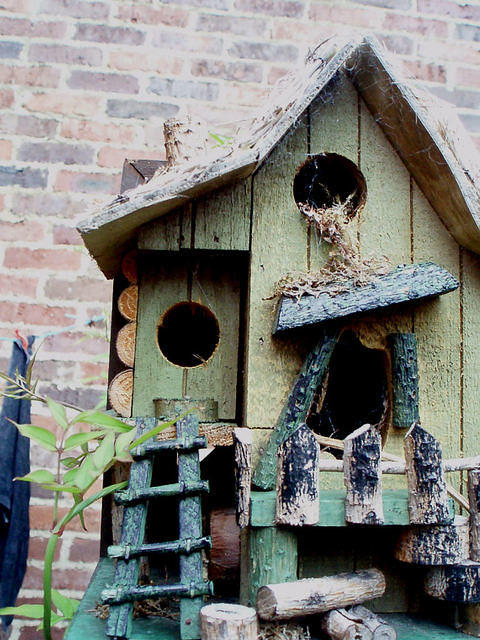 bird house nest