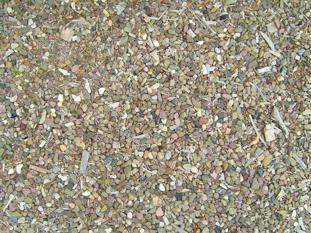 small_pebbles_TT7010084.JPG