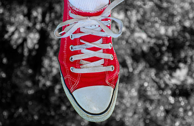 PUB.DOM.DED.Pixa digionbew 16 24-08-16  Red sneaker on tree LOW  RES