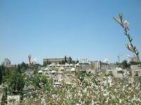 View-from-Ha-Emek-Jerusalem-6-18-08-2