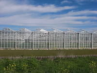 A9091 greenhouses blue sky clouds