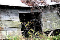 Broken Farm Shed