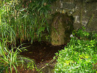 Kilcullen_TheValley_Park_ThePool_Below_StBrigids_Well