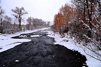 Yampa River Winter