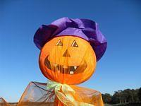 Yard Ornament - Funny pumkin face