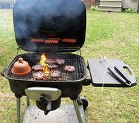 BBQ_Burgers_And_Hot_dogs_plus_Onoin01