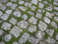 Grass and cobbles