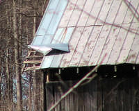 Wind Damage To Barns Tin Roof