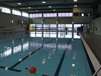 indoor olympic swiming pool