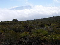 A view from Hualalai to Mauna Loa